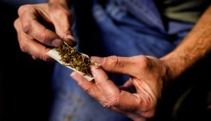 Cannabis e Esclerose Múltipla