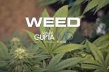 #Weed – Sanjay Gupta – Legendado Português