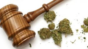 10 motivos porque deve-se legalizar a cannabis
