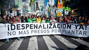 Argentina avança na despenalização das drogas
