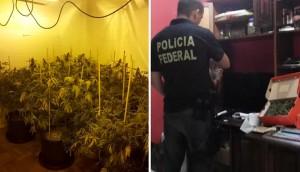 Operaçnao da Polícia Federal prende cultivadores no Rio de Janeiro