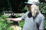 Entrevista com Jorge Cervantes: Parte II