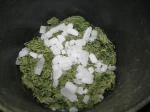 Bubble Hash - Extração com gelo