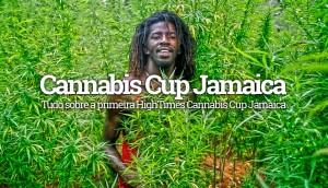 Cannabis Cup Jamaica 2015
