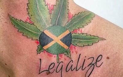 Pagodeiro tatua folha de maconha e pede legalização