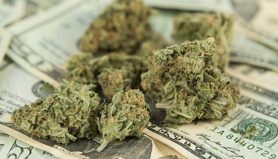 Washington recebe US$ 65 milhões em impostos no primeiro ano da legalização da maconha