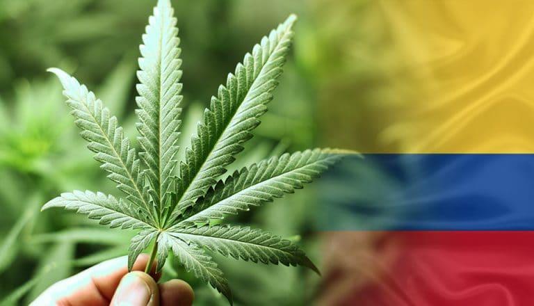 Weed-marijuana-Colômbia