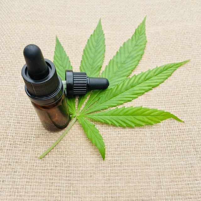 Óleo de Cannabis