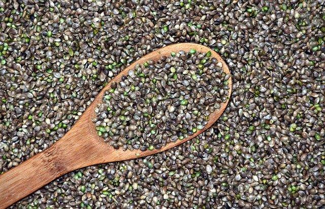 O que são as sementes regulares?