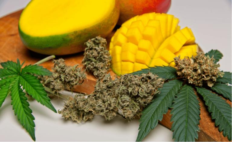 Terpenos encontrados em frutas