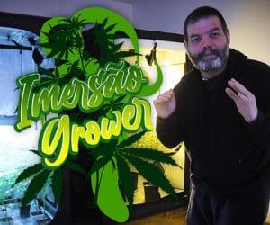 Imersão Grower é um evento inédito do Growroom com aulas ao vivo sobre cultivo.