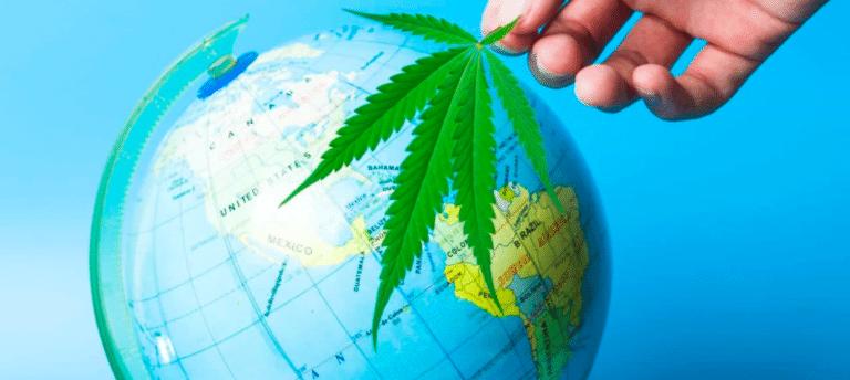 ONU maconha retirada drogas - Grassdor