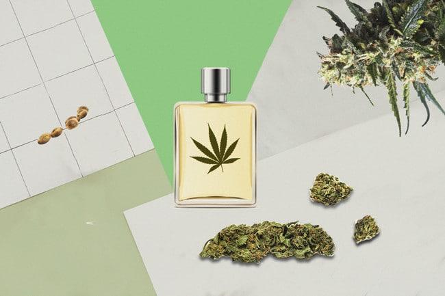 perfume com cheiro de maconha