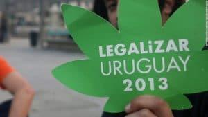 cannabis cultivadores uruguaios presos