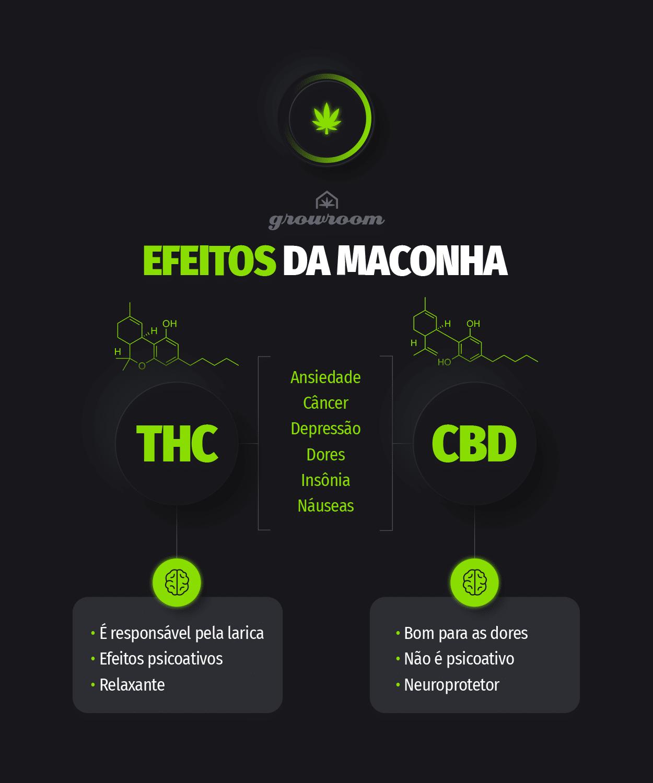 Efeitos da maconha CBD e THC Growroom