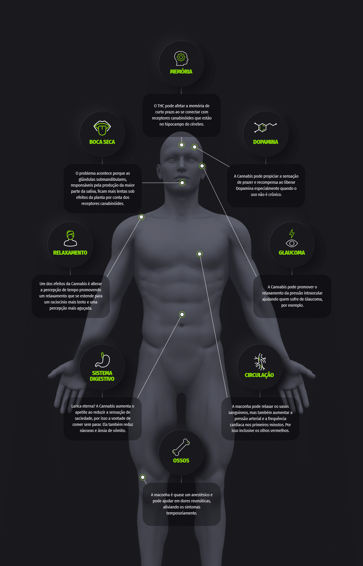 Efeitos da maconha no corpo e na mente Growroom